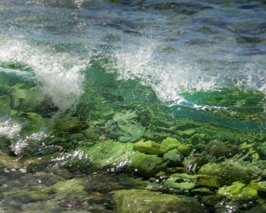 el paladar de las olas muestra el fondo marino antes de romper en espuma