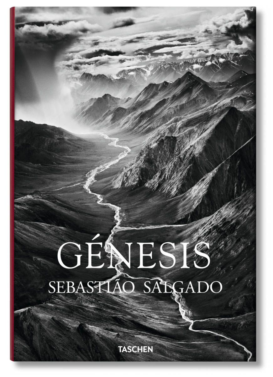 portada libro genesis salgado