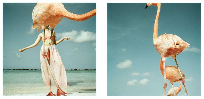 Annelie Vandendael la fotografia es mi pasion