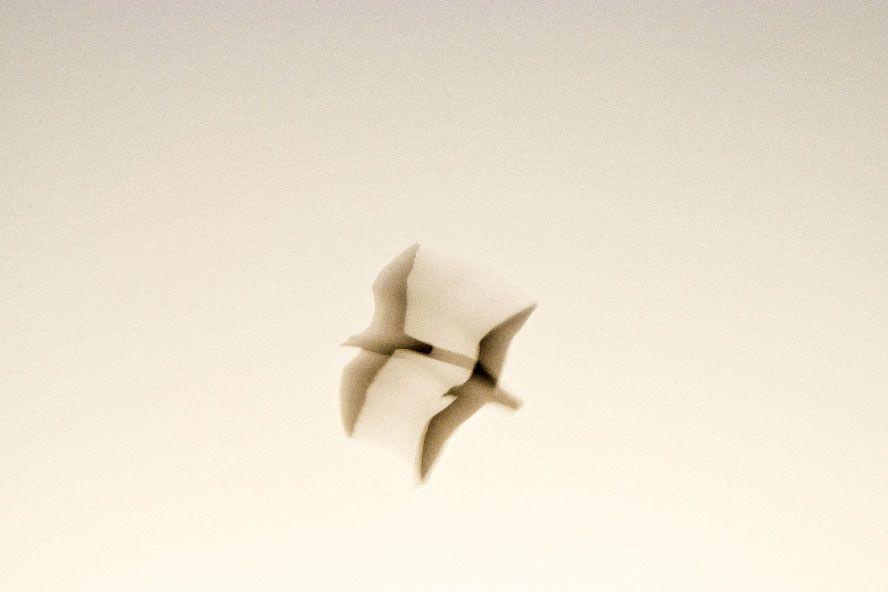 poesia y viento xisco fuster la fotografia es mi pasion