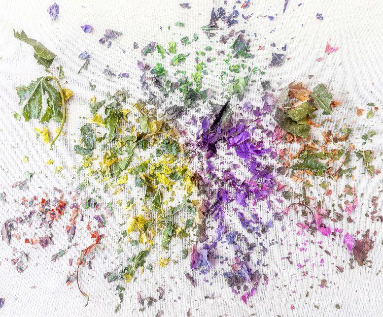 colores el futuro de la fotografia xisco fuster