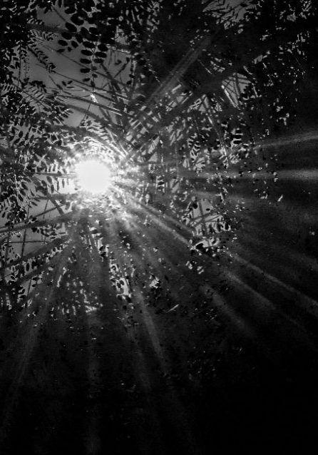 la luz en las tinieblas la fotografia es mi pasion